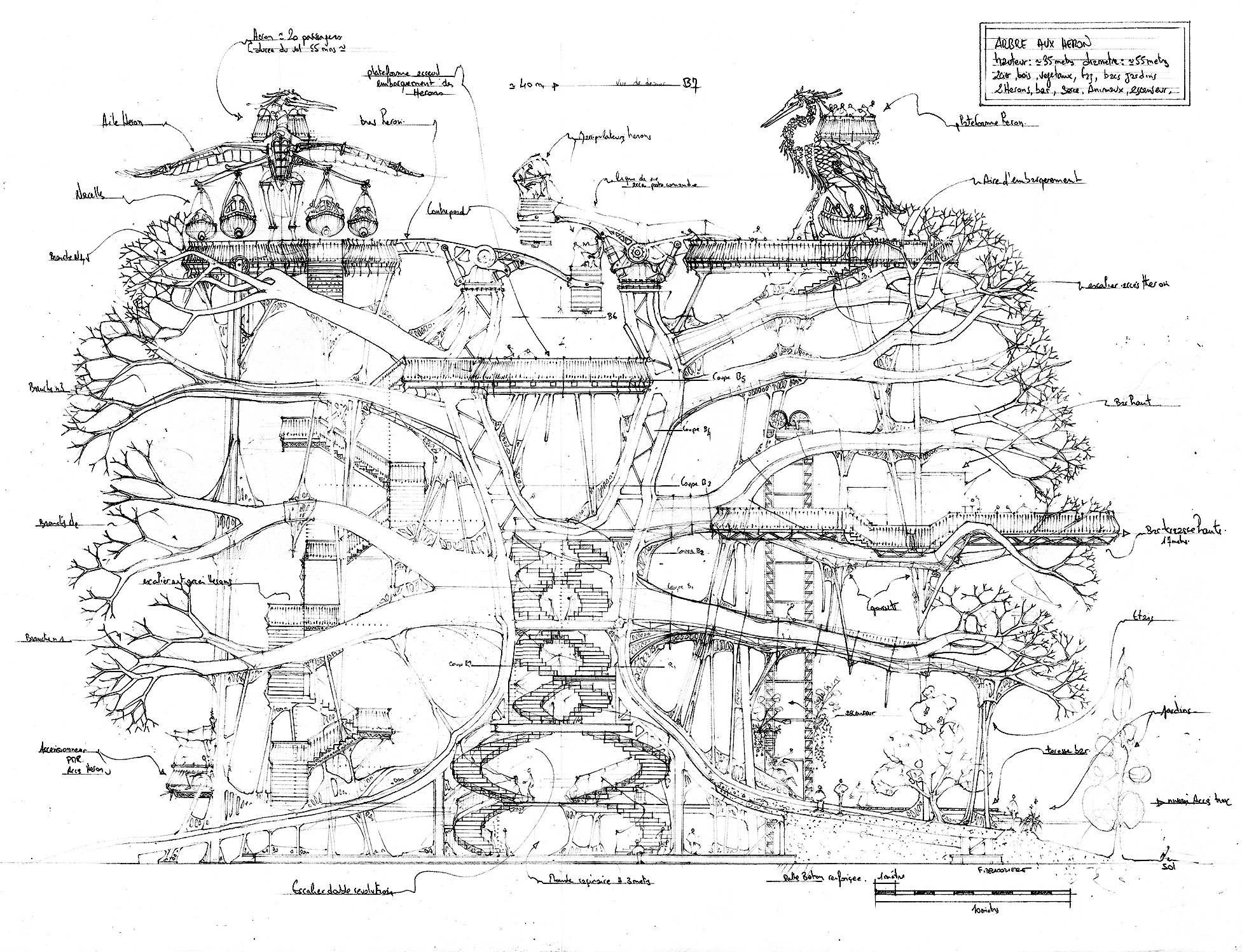 arbreauxherons-sketch